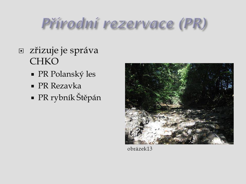  zřizuje je správa CHKO  PR Polanský les  PR Rezavka  PR rybník Štěpán obrázek13