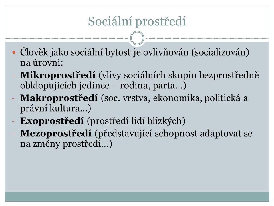 Sociální prostředí Člověk jako sociální bytost je ovlivňován (socializován) na úrovni: - Mikroprostředí (vlivy sociálních skupin bezprostředně obklopu