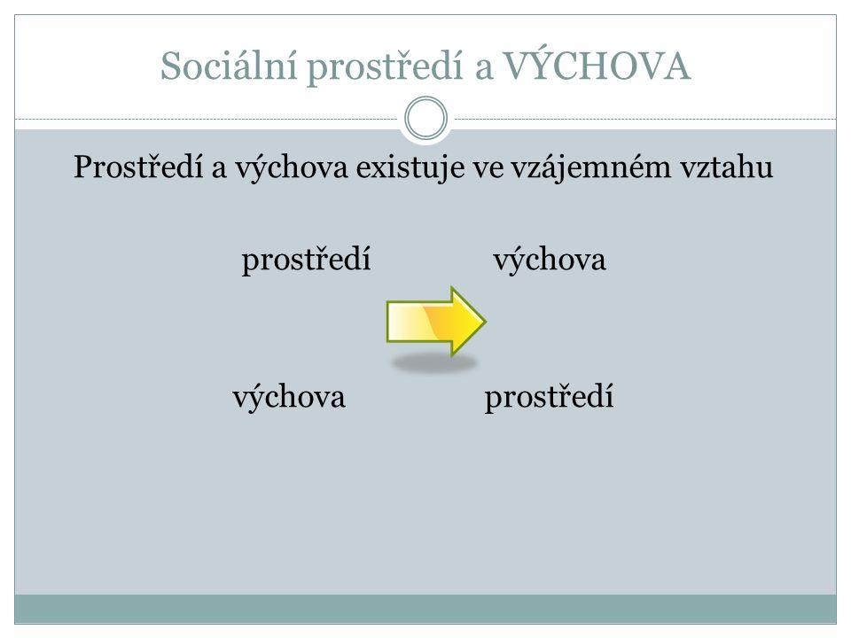 Sociální prostředí a VÝCHOVA Vlivy prostředí na výchovu lze nejlépe vyjádřit ve vztahu k porozumění procesům socializace.