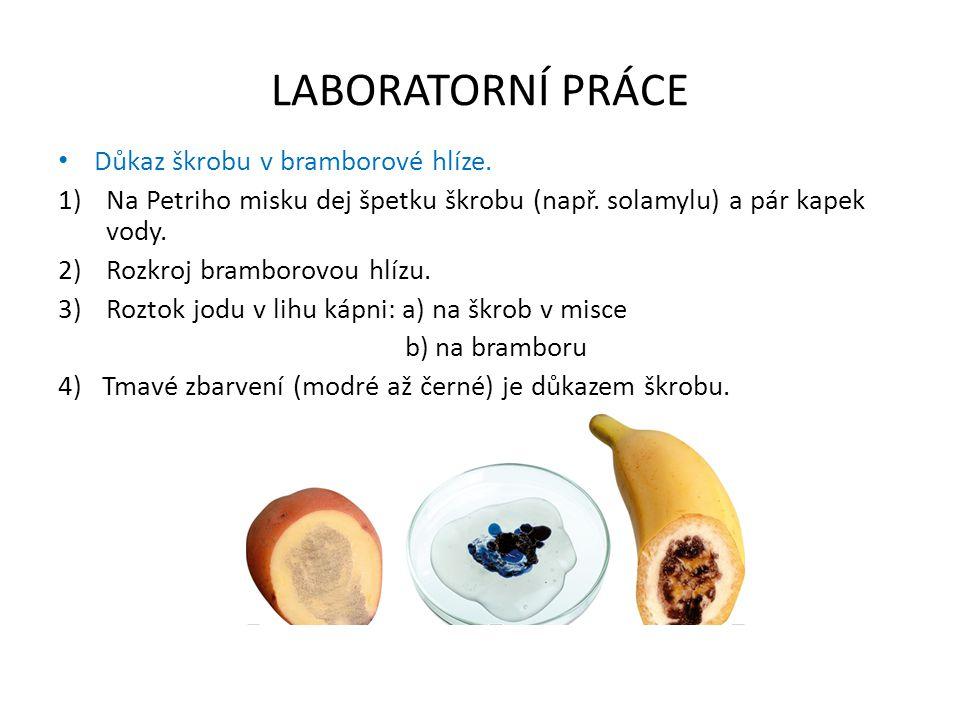 LABORATORNÍ PRÁCE Důkaz škrobu v bramborové hlíze. 1)Na Petriho misku dej špetku škrobu (např. solamylu) a pár kapek vody. 2)Rozkroj bramborovou hlízu
