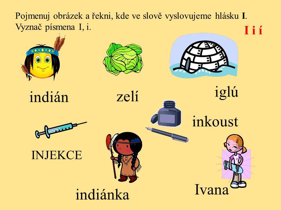 Kontrola. I i í indián indiánka Ivana iglú INJEKCE inkoust zelí