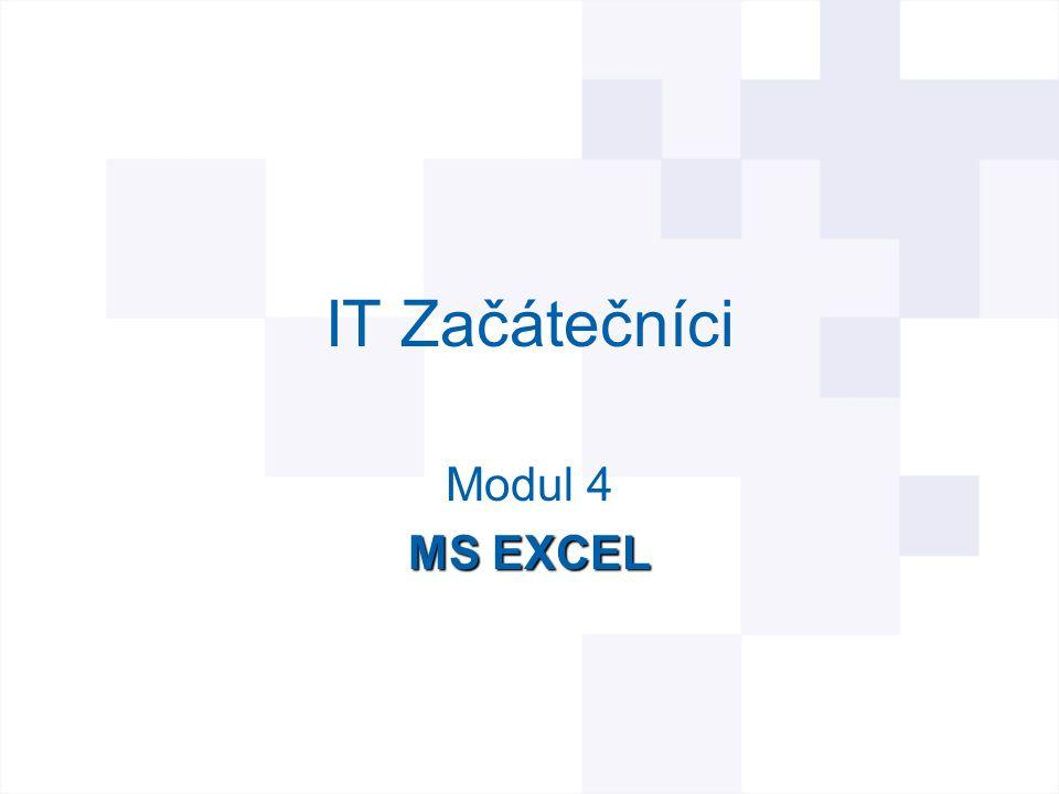 Začínáme s MS Excel MS Excel 2003 tabulkový program, který vám umožní zaznamenat, analyzovat a prezentovat informace založené na číselných hodnotách