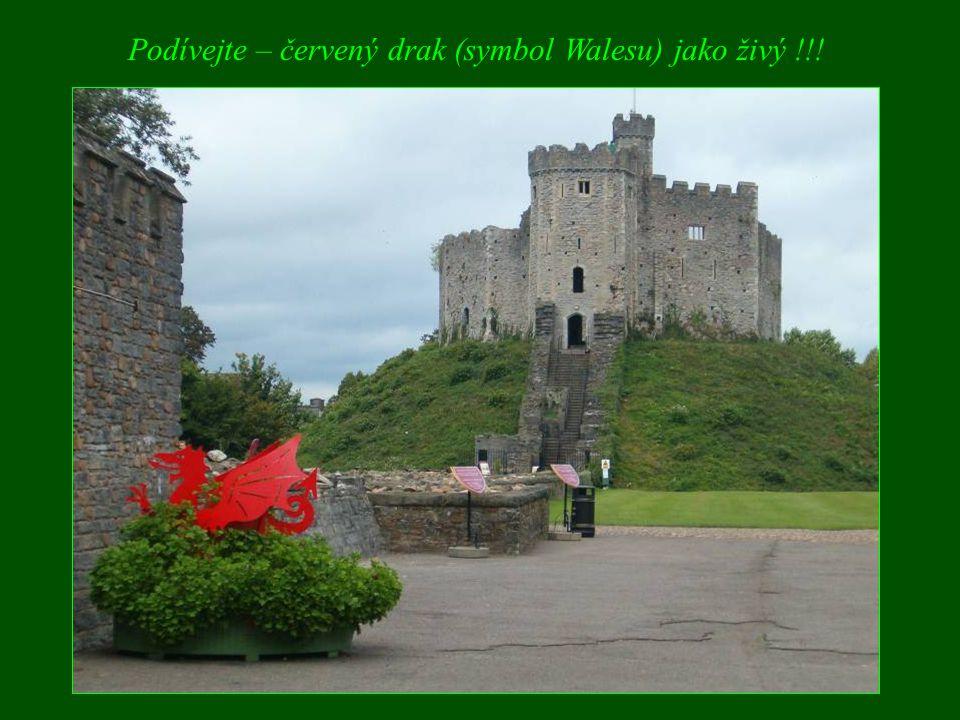 Podívejte – červený drak (symbol Walesu) jako živý !!!