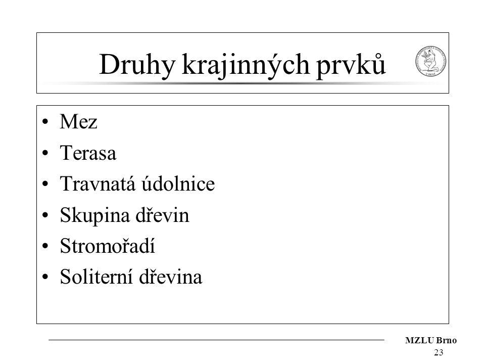 MZLU Brno Druhy krajinných prvků Mez Terasa Travnatá údolnice Skupina dřevin Stromořadí Soliterní dřevina 23