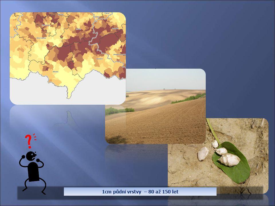 1cm půdní vrstvy – 80 až 150 let