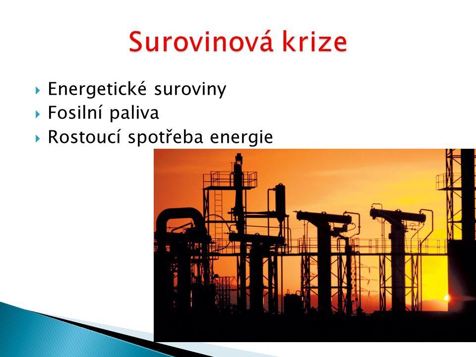  Energetické suroviny  Fosilní paliva  Rostoucí spotřeba energie