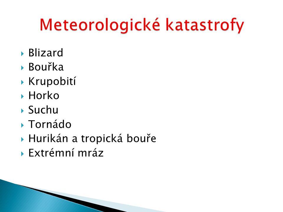  Blizard  Bouřka  Krupobití  Horko  Suchu  Tornádo  Hurikán a tropická bouře  Extrémní mráz