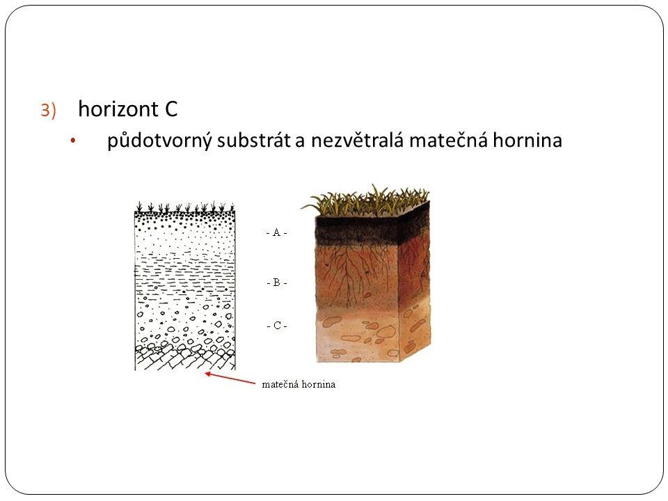 3) horizont C půdotvorný substrát a nezvětralá matečná hornina