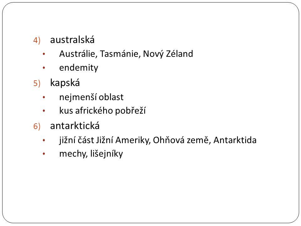 4) australská Austrálie, Tasmánie, Nový Zéland endemity 5) kapská nejmenší oblast kus afrického pobřeží 6) antarktická jižní část Jižní Ameriky, Ohňov