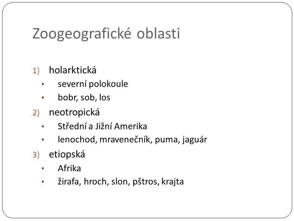 Zoogeografické oblasti 1) holarktická severní polokoule bobr, sob, los 2) neotropická Střední a Jižní Amerika lenochod, mravenečník, puma, jaguár 3) e