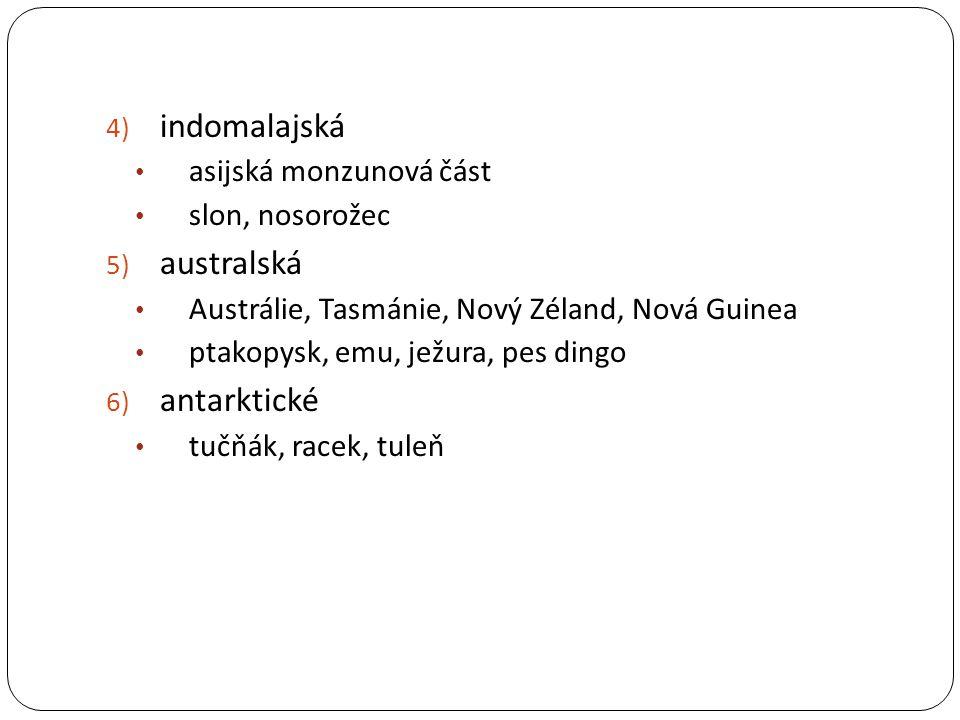 4) indomalajská asijská monzunová část slon, nosorožec 5) australská Austrálie, Tasmánie, Nový Zéland, Nová Guinea ptakopysk, emu, ježura, pes dingo 6