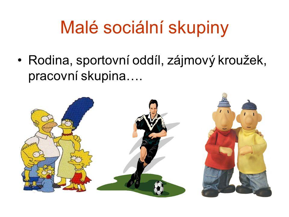 Malé sociální skupiny Rodina, sportovní oddíl, zájmový kroužek, pracovní skupina….