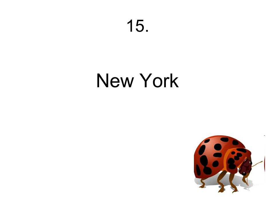 15. New York