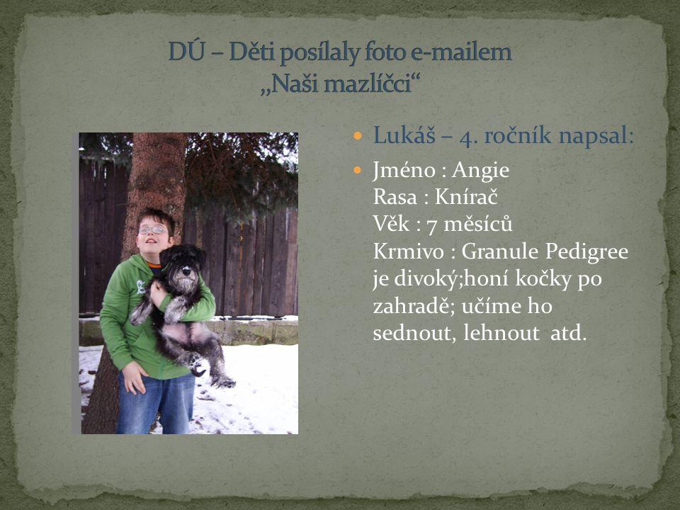 Lukáš – 4. ročník napsal: Jméno : Angie Rasa : Knírač Věk : 7 měsíců Krmivo : Granule Pedigree je divoký;honí kočky po zahradě; učíme ho sednout, lehn