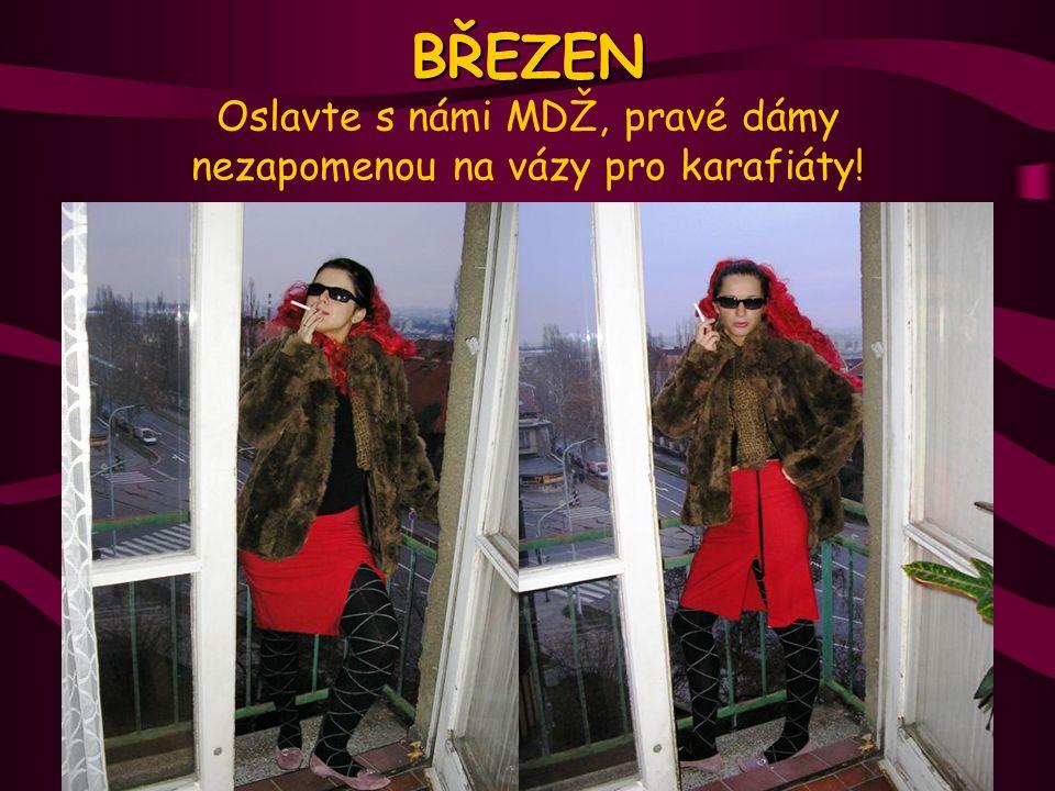 Vyrobila pro vás agentura VLATERDIBA © 2005