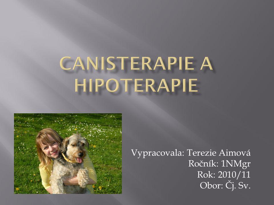 Vypracovala: Terezie Aimová Ročník: 1NMgr Rok: 2010/11 Obor: Čj. Sv.