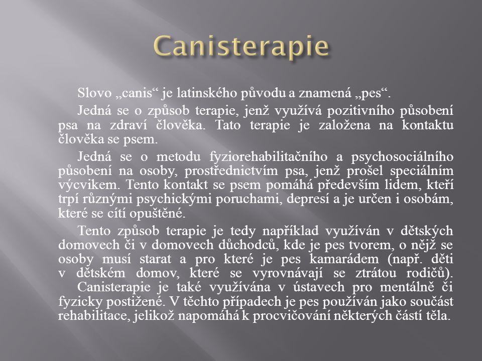 """Slovo """"canis"""" je latinského původu a znamená """"pes"""". Jedná se o způsob terapie, jenž využívá pozitivního působení psa na zdraví člověka. Tato terapie j"""