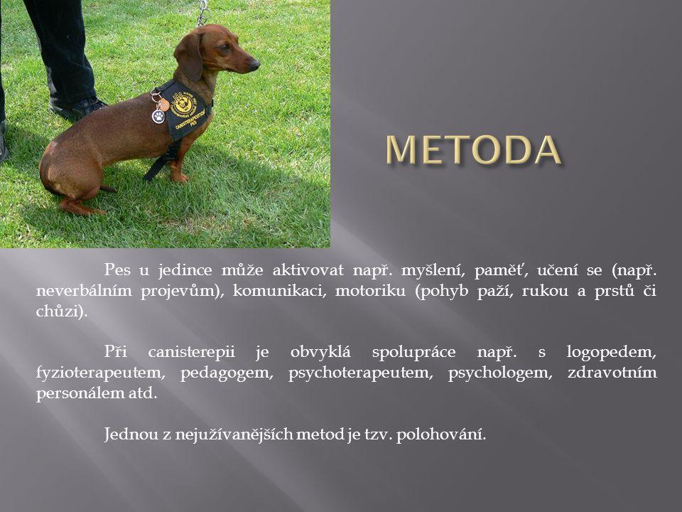 Pes u jedince může aktivovat např. myšlení, paměť, učení se (např. neverbálním projevům), komunikaci, motoriku (pohyb paží, rukou a prstů či chůzi). P