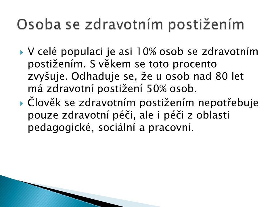  Doporučení Výboru ministrů Rady Evropy (2004) 23 ◦ O organizaci paliativní péče  Je dokument evropského významu, jehož hlavním cílem je, že na paliativní péči se má pohlížet jako na velmi významnou součást systému zdravotnických služeb.