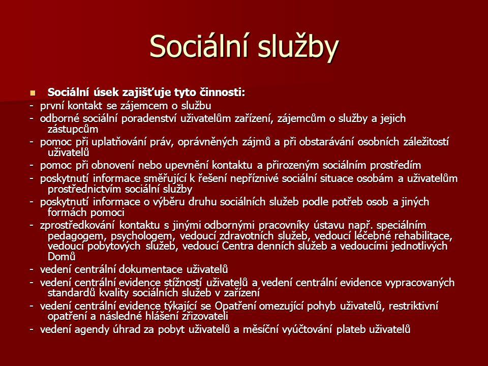 Sociální služby Sociální úsek zajišťuje tyto činnosti: Sociální úsek zajišťuje tyto činnosti: - první kontakt se zájemcem o službu - odborné sociální