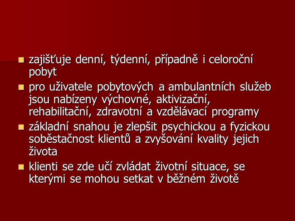jeden z objektů Jedličkova ústavu nabízí tzv.