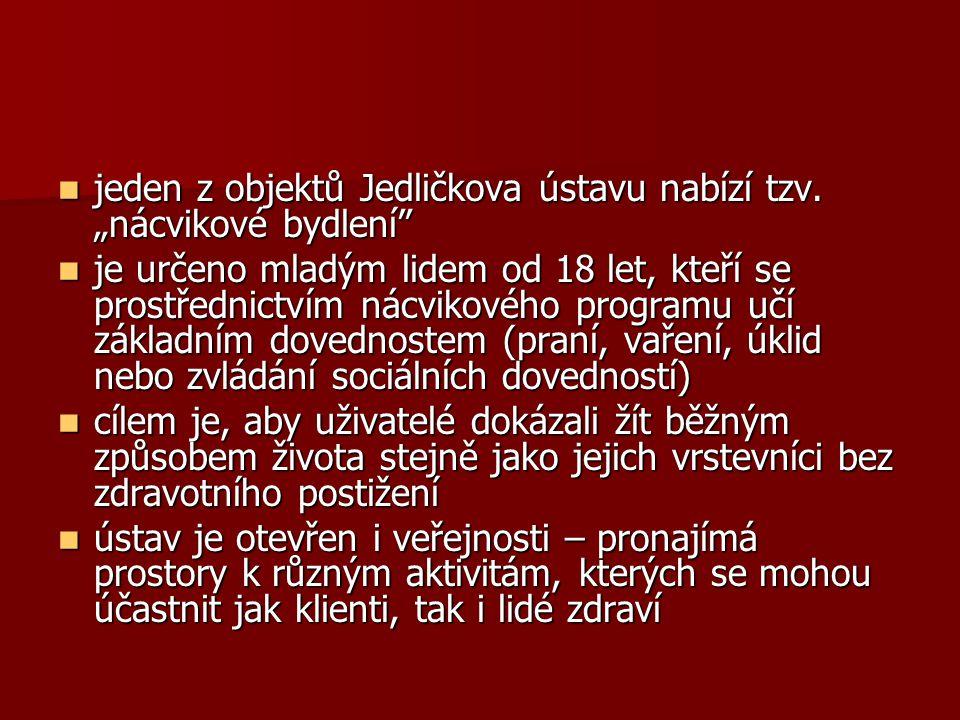 """jeden z objektů Jedličkova ústavu nabízí tzv. """"nácvikové bydlení"""" jeden z objektů Jedličkova ústavu nabízí tzv. """"nácvikové bydlení"""" je určeno mladým l"""