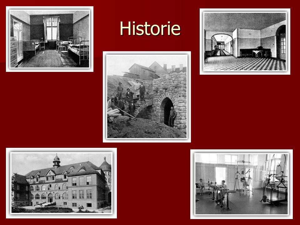 Jedličkův ústav v Praze Jedličkův ústav v Praze na Vyšehradě byl otevřen 1.
