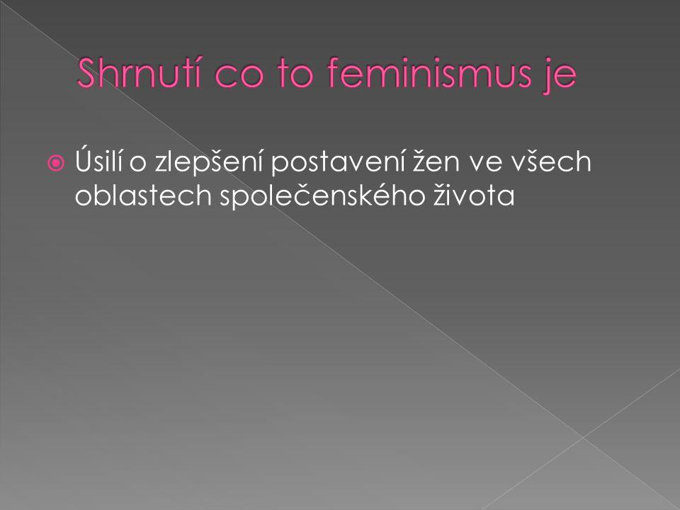 Úsilí o zlepšení postavení žen ve všech oblastech společenského života