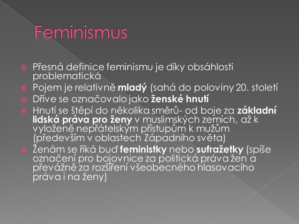  Přesná definice feminismu je díky obsáhlosti problematická  Pojem je relativně mladý (sahá do poloviny 20. století  Dříve se označovalo jako žensk