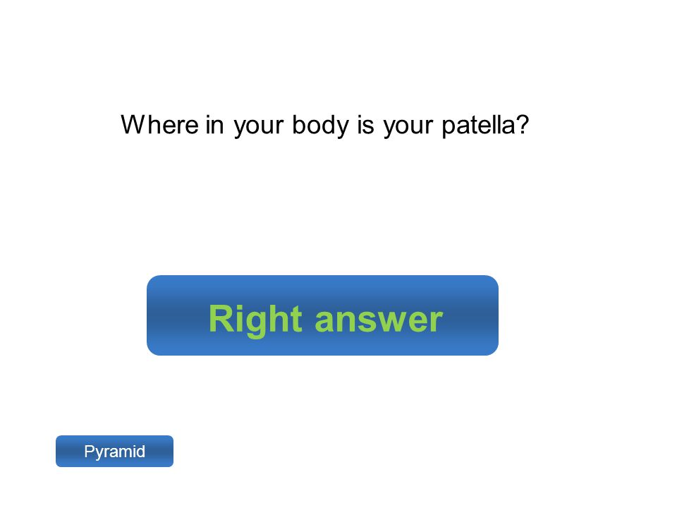 Right answer Pyramid Where in your body is your patella?