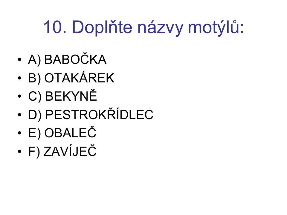 10. Doplňte názvy motýlů: A) BABOČKA B) OTAKÁREK C) BEKYNĚ D) PESTROKŘÍDLEC E) OBALEČ F) ZAVÍJEČ