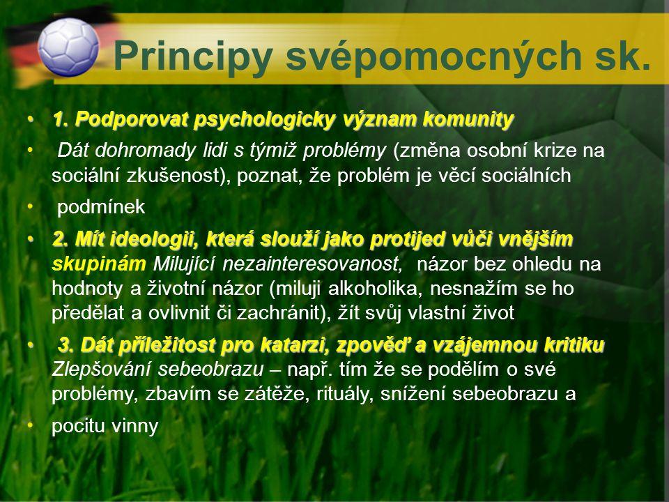Principy svépomocných sk. 1. Podporovat psychologicky význam komunity1. Podporovat psychologicky význam komunity Dát dohromady lidi s týmiž problémy (