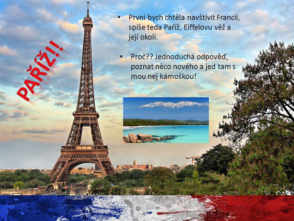 První bych chtěla navštívit Francii, spíše teda Paříž, Eiffelovu věž a její okolí. Proč?? Jednoduchá odpověď, poznat něco nového a jed tam s mou nej k
