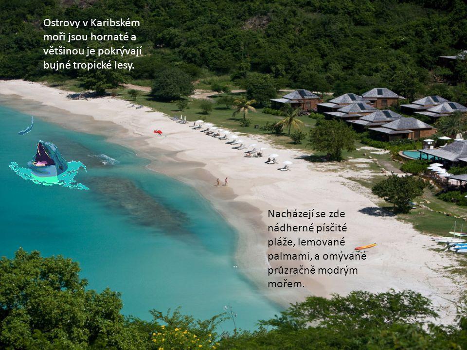 Ostrovy v Karibském moři jsou hornaté a většinou je pokrývají bujné tropické lesy.