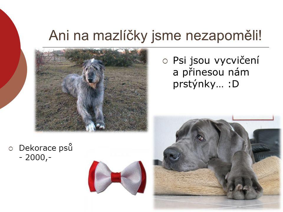Ani na mazlíčky jsme nezapoměli!  Psi jsou vycvičení a přinesou nám prstýnky… :D  Dekorace psů - 2000,-