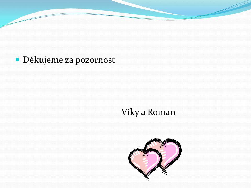 Děkujeme za pozornost Viky a Roman