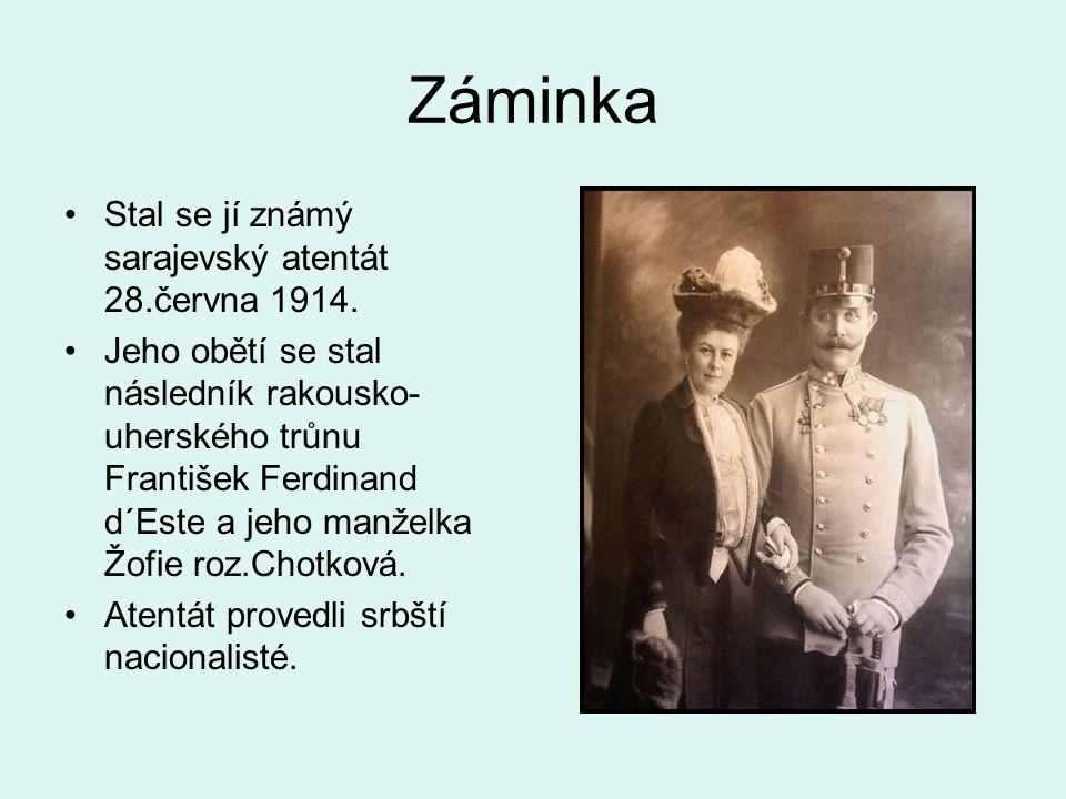 Záminka Stal se jí známý sarajevský atentát 28.června 1914.