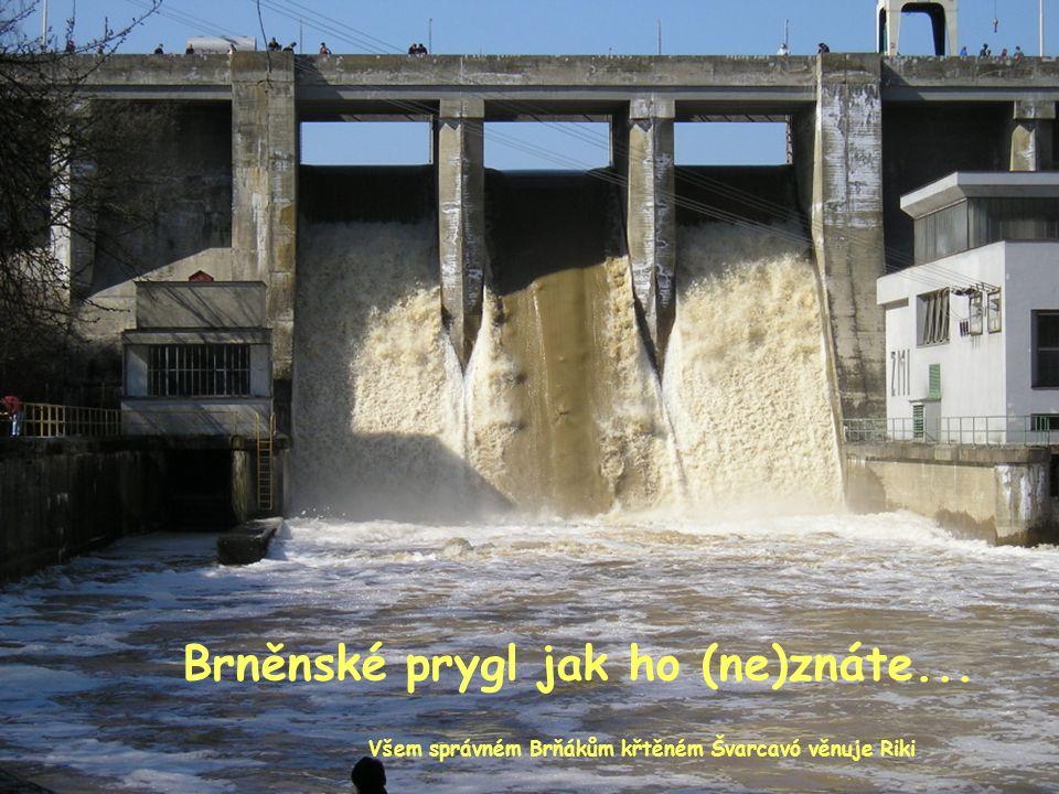 Brněnské prygl jak ho (ne)znáte... Všem správném Brňákům křtěném Švarcavó věnuje Riki