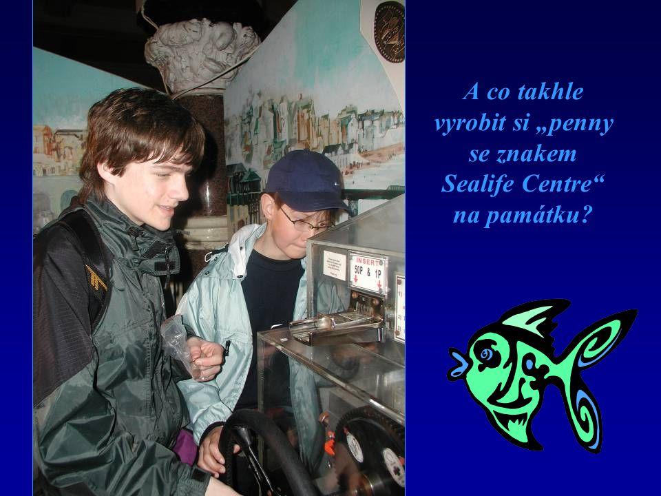 """A co takhle vyrobit si """"penny se znakem Sealife Centre na památku"""
