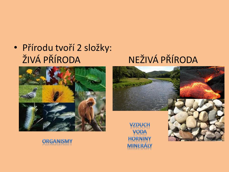 Přírodu tvoří 2 složky: ŽIVÁ PŘÍRODANEŽIVÁ PŘÍRODA