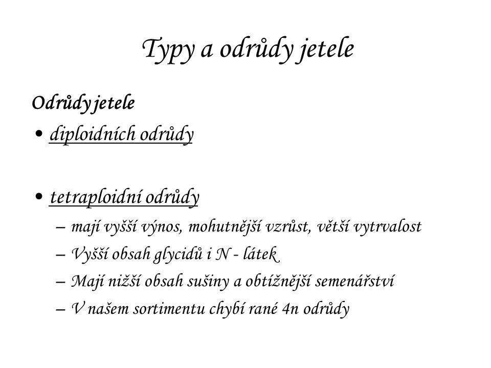 Typy a odrůdy jetele Odrůdy jetele diploidních odrůdy tetraploidní odrůdy –mají vyšší výnos, mohutnější vzrůst, větší vytrvalost –Vyšší obsah glycidů i N - látek –Mají nižší obsah sušiny a obtížnější semenářství –V našem sortimentu chybí rané 4n odrůdy