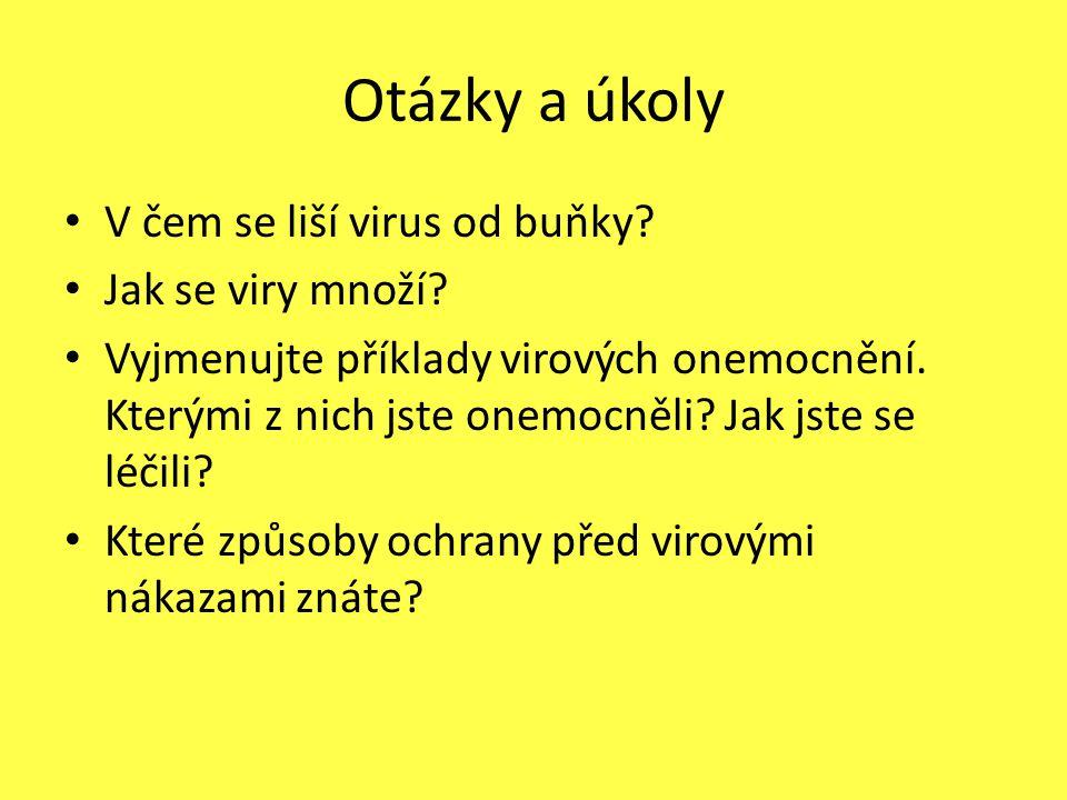 Otázky a úkoly V čem se liší virus od buňky? Jak se viry množí? Vyjmenujte příklady virových onemocnění. Kterými z nich jste onemocněli? Jak jste se l
