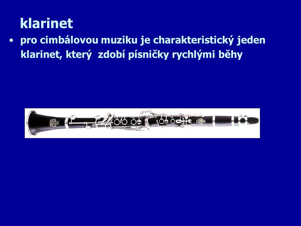 basa ( kontrabas ) nástroj strunný smyčcový