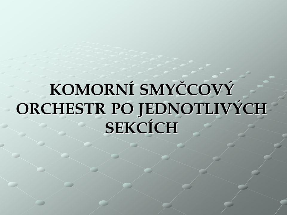 obsazení komorního smyčcového orchestru skupina 1. houslí skupina 2. houslí violy violoncella 1 nebo 2 kontrabasy