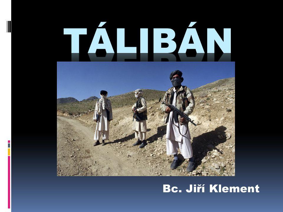 Tálibánci se skrývají v horách Nemají armádu (partyzánská válka) Finance z vývozu opia, podle OSN 90% celosvětových zásob heroinu (začarovaný kruh) Spojenecké armády neustále ničí úkryty (vyspělá technika) Podpora infrastruktury – školy, nemocnice… Výcvik policie a armády Vývoj po Tálibánu
