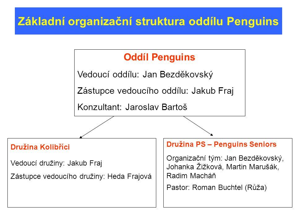 Pozitiva Stabilní členská základna Dlouhodobě stabilní tým vedoucích Současná situace oddílu Negativa Stagnující resp.