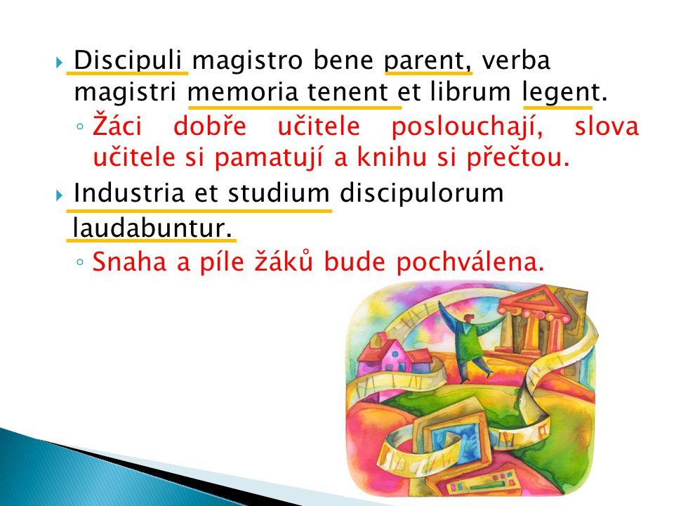  Discipuli magistro bene parent, verba magistri memoria tenent et librum legent.
