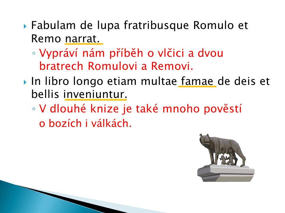  Fabulam de lupa fratribusque Romulo et Remo narrat.