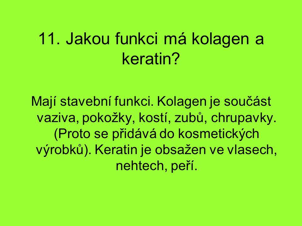 11. Jakou funkci má kolagen a keratin? Mají stavební funkci. Kolagen je součást vaziva, pokožky, kostí, zubů, chrupavky. (Proto se přidává do kosmetic