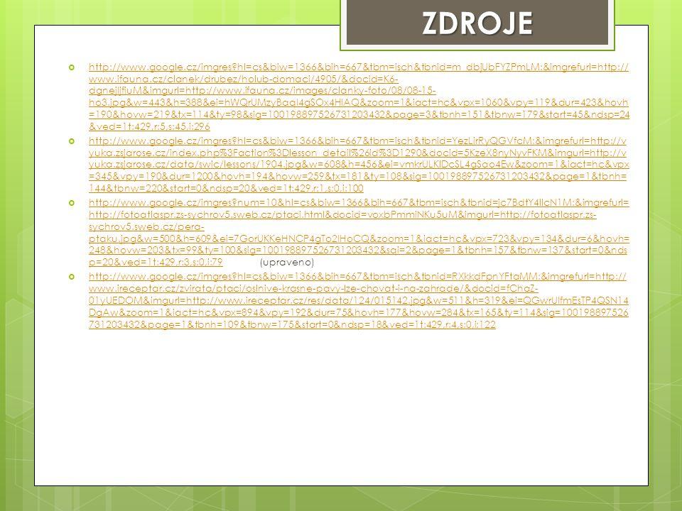  http://www.google.cz/imgres?hl=cs&biw=1366&bih=667&tbm=isch&tbnid=m_dbjUbFYZPmLM:&imgrefurl=http:// www.ifauna.cz/clanek/drubez/holub-domaci/4905/&d